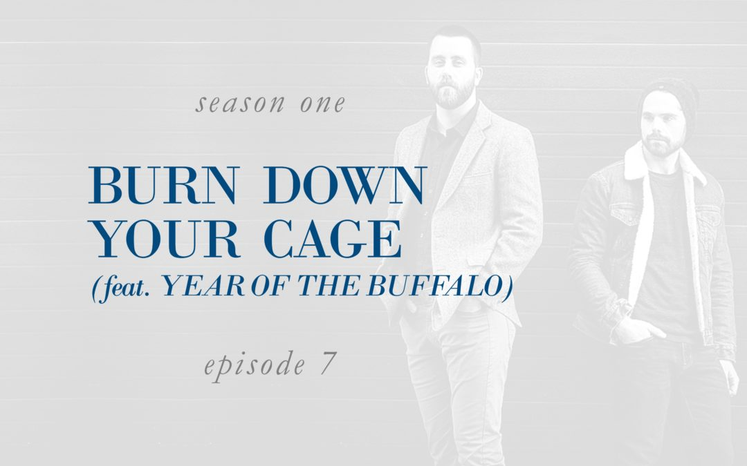 Burn Down Your Cage (feat. Year of the Buffalo)