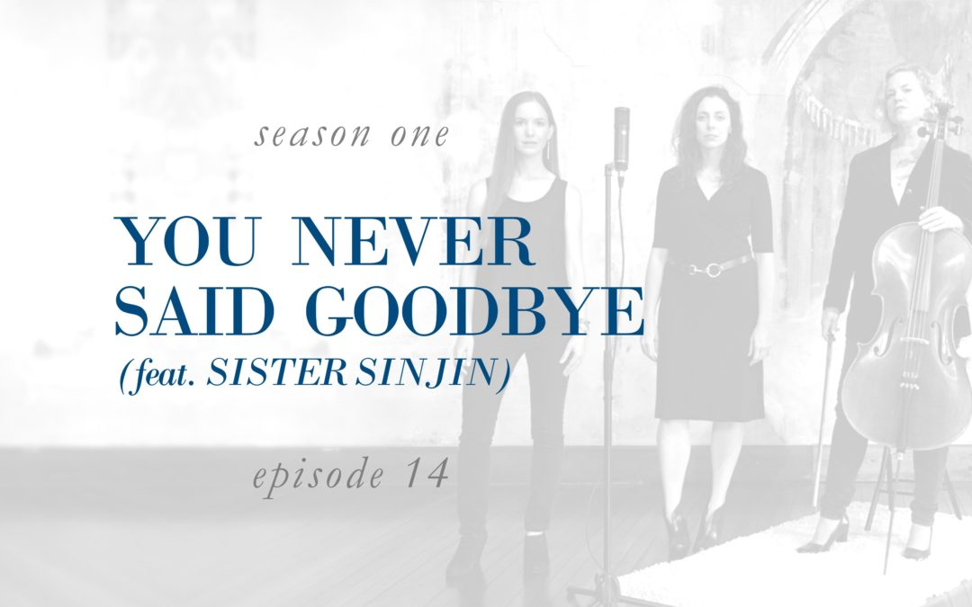 You Never Said Goodbye (feat. Sister Sinjin)